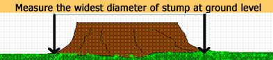 picture of how to measure stump